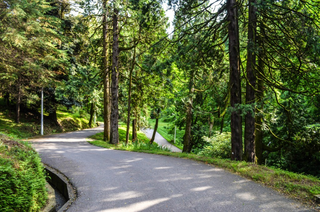 Батумский ботанический сад, дорога