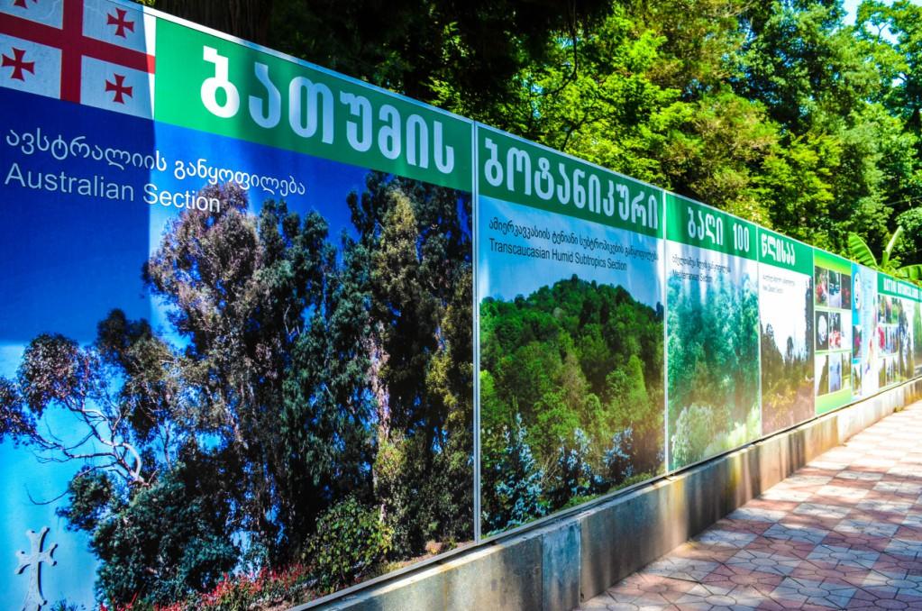 Батумский ботанический сад, плакат
