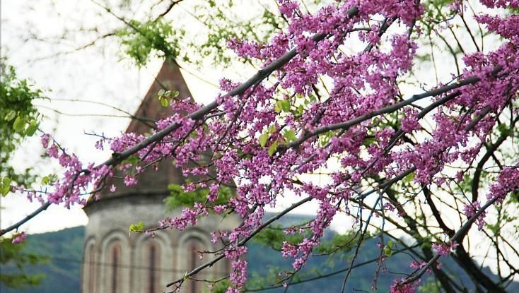 Грузия в мае